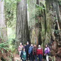 Redwood National Park, 2013